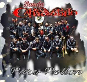 Banda Carnavalito - Contrataciones Cel 4432419132