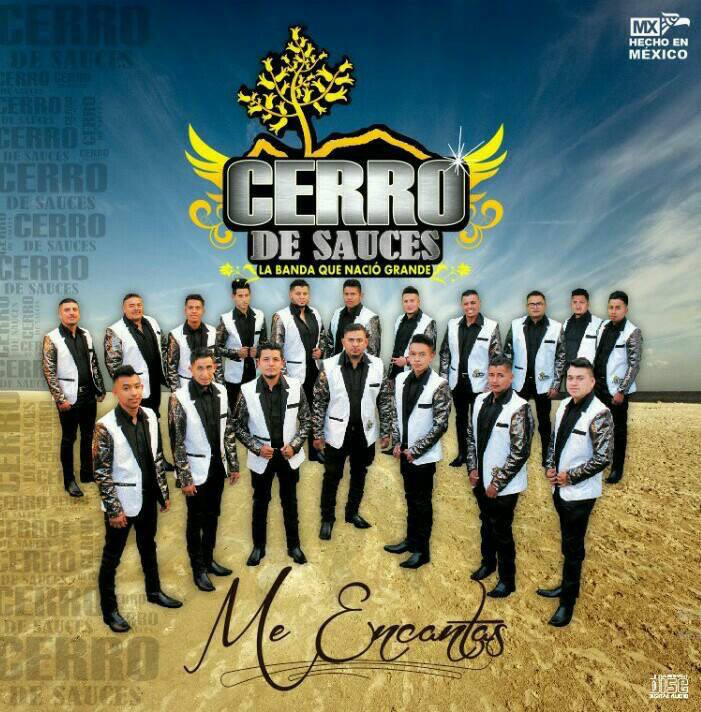 Banda Cerro de Sauces - Contrataciones Cel 4432419132
